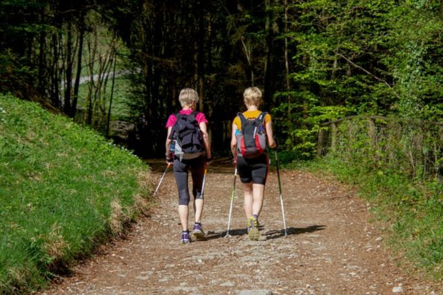 Zdrowy ruch – nordic walking